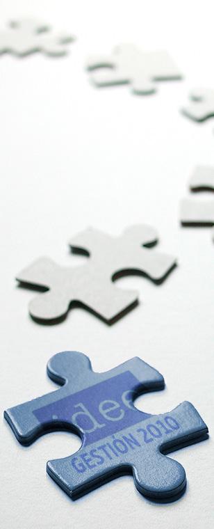 presupuestos_puzzle_idee_gestion